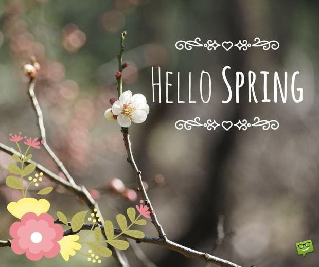 hello-spring-4